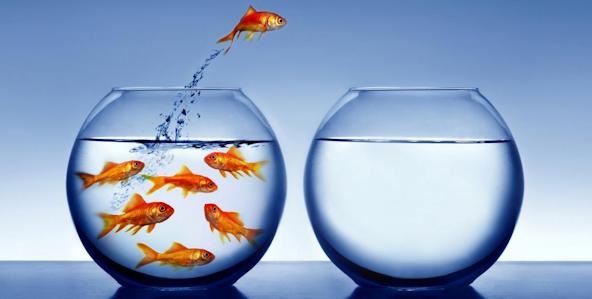 Pesce che salta fuori dalla boccia per stare da solo