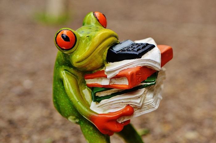Stress e lavoro - Una rana carica di carte da ufficio